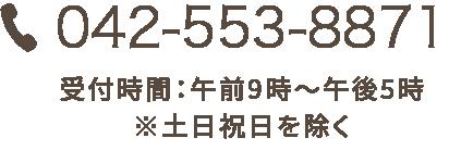 0120948081